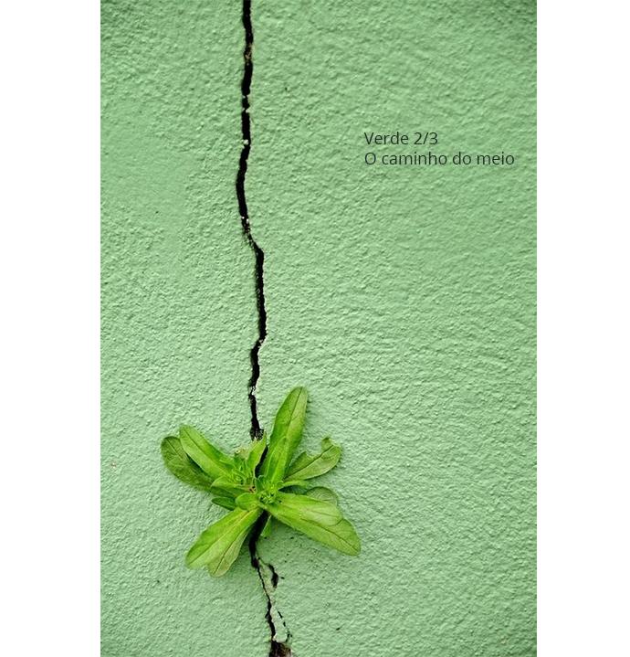 simbologia das cores - verde - por Andresa Caparroz
